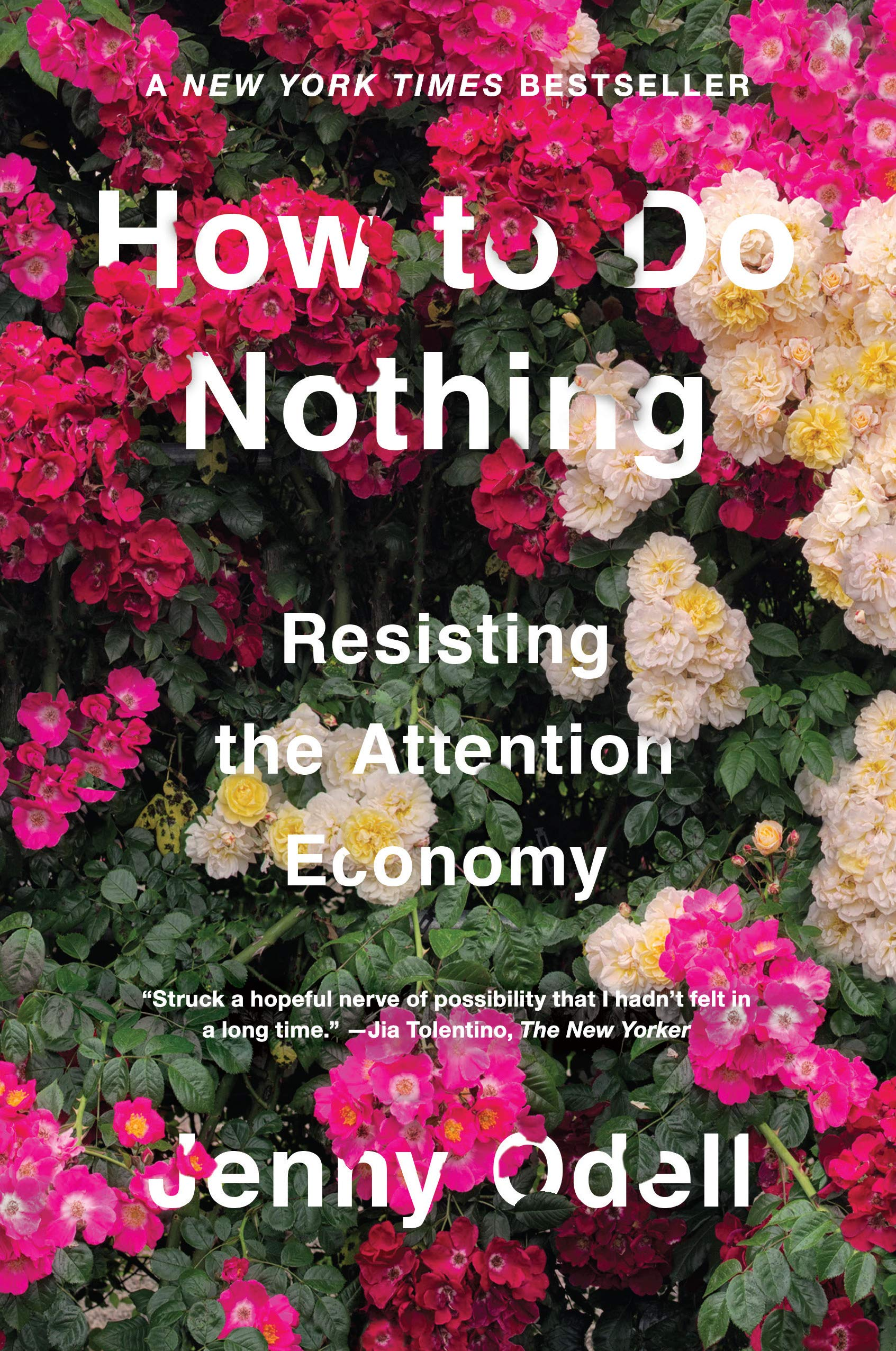 How to Do Nothing: Resisting the Attention Economy — Jenny Odell